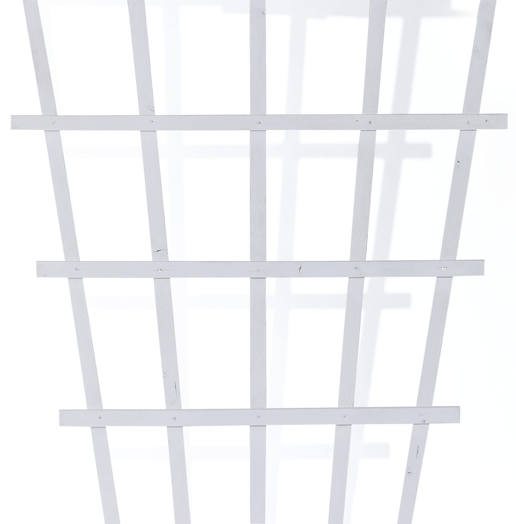 Espalier træ, hvid Solfjeder 80x175cm